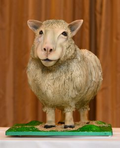 Dolly the Sheep Cake